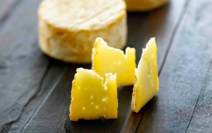 rabstol_net_cheese_27